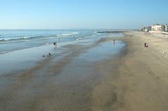 皇家的海滩 免版税库存照片