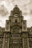 皇家肝脏大厦门面低角度 库存照片