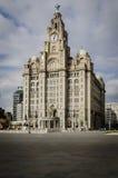 皇家肝脏大厦,利物浦 免版税库存图片