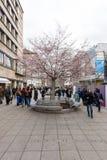 皇家街道Koenigstrasse -一条普遍的购物街道在历史的中心 斯图加特 库存照片