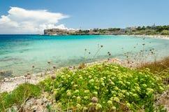 皮亚诺萨岛,托斯卡纳,意大利海岛  库存照片