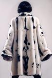 皮大衣冬天给时尚穿衣 免版税图库摄影