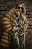 皮大衣的妇女 库存照片