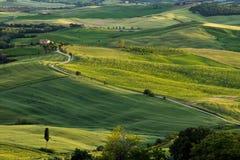皮恩扎, TUSCANY/ITALY - 5月19日:在皮恩扎下的农田托斯卡纳的 免版税图库摄影