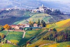 皮耶蒙特葡萄园和城堡秋天颜色的 在Ita北部 免版税图库摄影