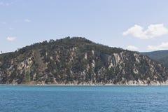 皮聪大在岩石海滨的杉树在手段解决Dzhanhot附近 免版税库存照片