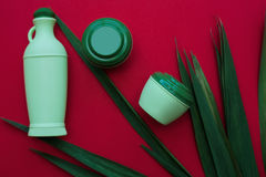 皮肤和身体关心卫生学湿气化妆水 免版税库存照片
