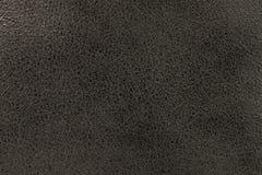 皮肤的纹理是灰色的 库存照片