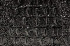 皮肤的纹理是灰色的 免版税库存图片
