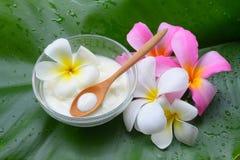 皮肤的面罩酸奶自然温泉治疗 图库摄影