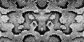 皮肤蛇纹理样式蟒蛇黑色白色 向量例证