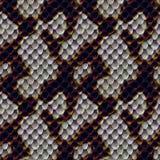 皮肤蛇纹理 库存图片