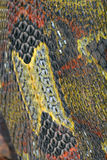 皮肤蛇 免版税库存图片