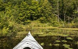 皮船在沼泽 免版税库存照片