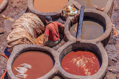 皮革厂工作者在Fes摩洛哥 图库摄影