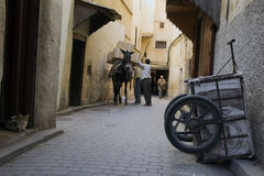 皮革厂 Fes麦地那,摩洛哥 闹事 免版税图库摄影