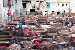 皮革厂souk,摩洛哥 库存照片