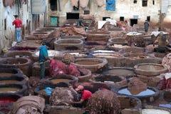 皮革厂souk,摩洛哥 库存图片