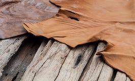 皮革和木背景 库存照片