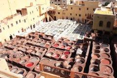 皮革在一个传统皮革厂, Fes,摩洛哥的着色 免版税图库摄影