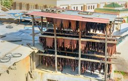 皮革干燥在皮革厂 fes摩洛哥 库存照片