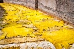 皮革干燥在阳光下在一个皮革厂在菲斯,摩洛哥 库存图片