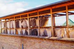 皮革干燥在Fes古老麦地那的皮革厂  免版税库存照片