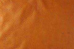 皮革棕褐色 库存图片