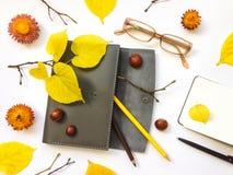 皮革笔盒、笔记本和玻璃特写镜头在白色背景 秋天栗子装饰葡萄10月石榴木头 顶视图,平的位置 库存照片