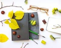 皮革笔盒、笔记本和玻璃特写镜头在白色背景 秋天栗子装饰葡萄10月石榴木头 顶视图,平的位置 库存图片