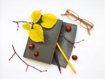皮革笔盒、笔记本和玻璃特写镜头在白色背景 秋天栗子装饰葡萄10月石榴木头 顶视图,平的位置 免版税库存图片