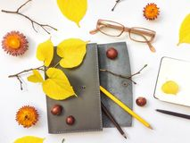 皮革笔盒、笔记本和玻璃特写镜头在白色背景 秋天栗子装饰葡萄10月石榴木头 顶视图,平的位置 免版税库存照片