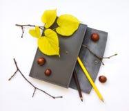 皮革笔盒特写镜头在白色背景的 秋天栗子装饰葡萄10月石榴木头 顶视图,平的位置 免版税图库摄影