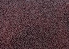 皮革自然纹理 图库摄影