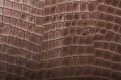皮革褐色压印的纹理 免版税库存图片