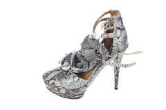 皮革豪华鞋子蛇妇女 免版税库存照片