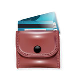 皮革钱包和信用卡 库存图片