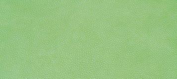 皮革绿色纹理 免版税库存照片