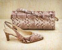 皮鞋和袋子 免版税库存图片