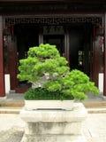 盆景中国人房子 免版税库存图片