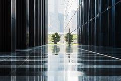 盆景在一个反射的走廊结束时 免版税库存图片