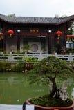 盆景树在中国庭院里 免版税库存图片