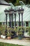 盆的开花植物和老灯在Festet附近的橘园 图库摄影