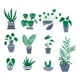 盆的植物装饰收藏 平的五颜六色的传染媒介例证 向量例证