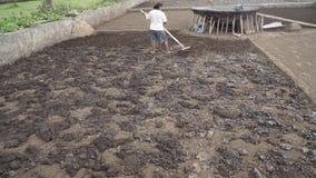 盐产品在巴厘岛 股票视频