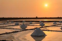 盐农场的风景 库存照片