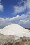 盐厂 库存图片