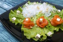 盐味的三文鱼和乳酪在沙拉 库存照片
