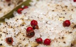 盐味的加香料的粮食表面 库存图片
