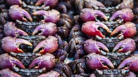 盐味的螃蟹在泰国街道食物市场上 图库摄影